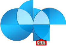 Dynamic Rockers Logo